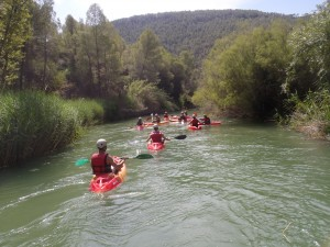 Río Segura ( a 10 min.)